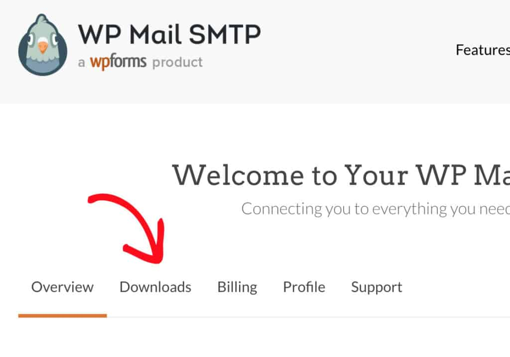 download wp mail smtp